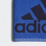 Uterák Adidas Swim CV4018 modrý